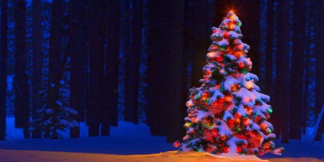 Drive Through Christmas Lights.A New Drive Through Christmas Lights Show Is Coming To The